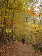 Rock Creek Park in Autumn