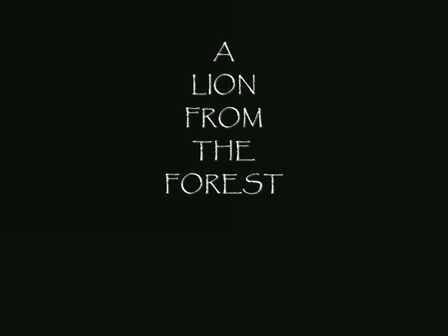 A LION FROM THE FOREST