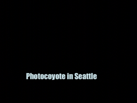 Photocoyote in Seattle