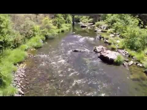 Roseburg Oregon Footage