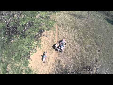 A dog and a horse, a tractor, kid, dad and drone