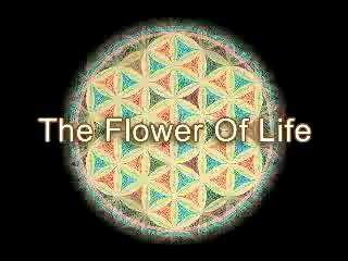 Geometria Sagrada: Círculos Concêntricos