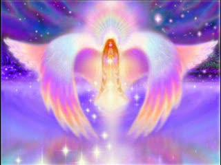 Llama Violeta Meditación