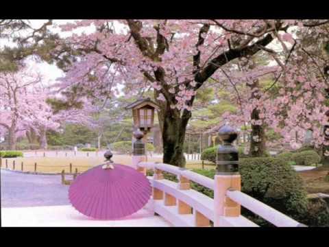 Very Relaxing Romantic Violin Music | My Way | Beautiful Nature Scenes
