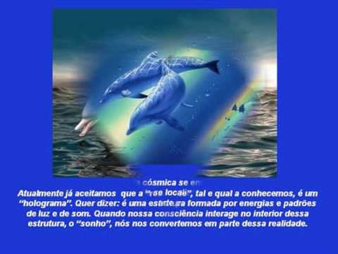 Mensagem dos Delfins