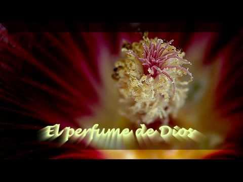 El perfume de Dios    Maharaji