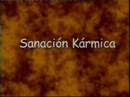 24 Sanacion Karmica