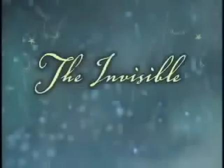 A mulher invisivel por Nicole Johnson   By Valceli Leite