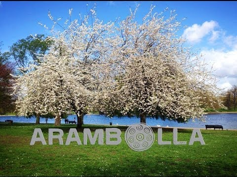 """""""Rostov Lullaby"""" - Music for the soul - ARAMBOLLA"""