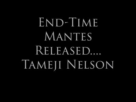 Endtime mantle Tameji