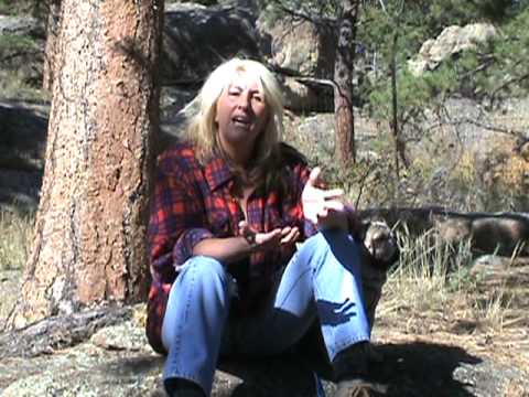 Earth Angels Network with Carol Guy Animal Communication Part 2