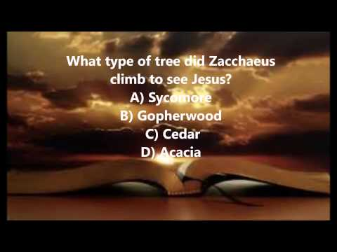 Bible Trivia 021 From The Book Of Luke
