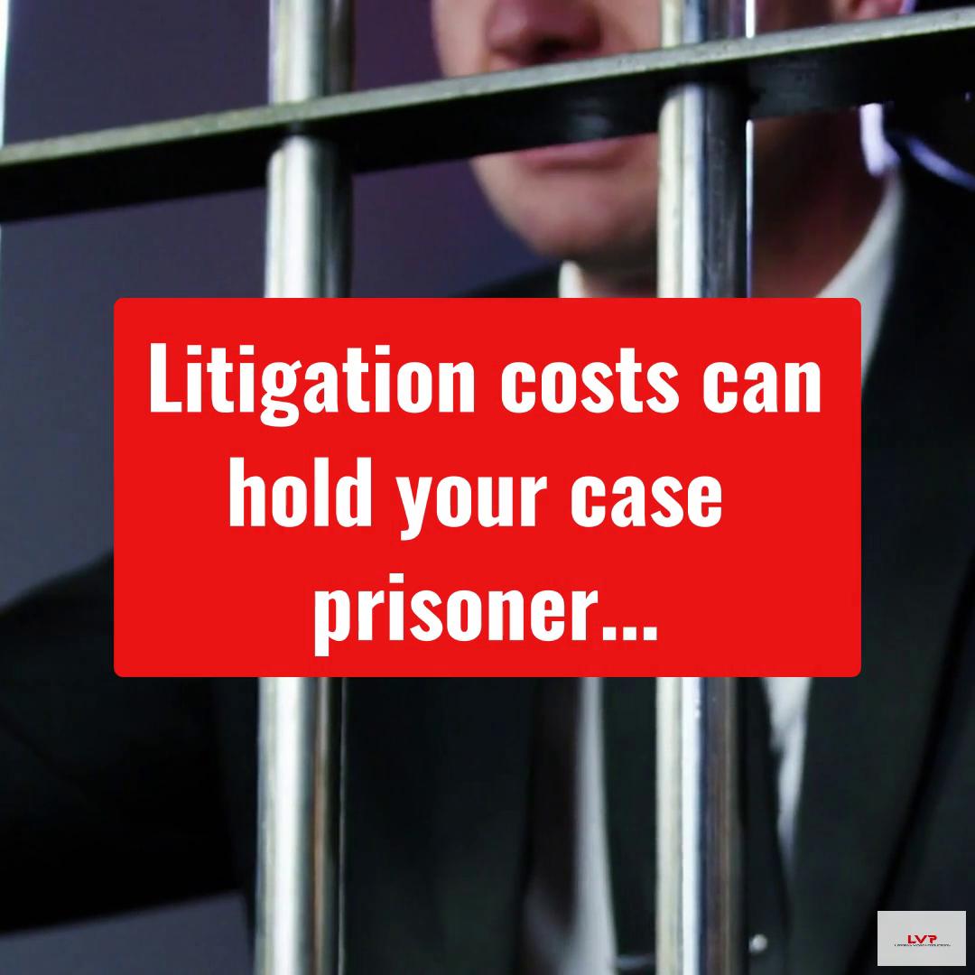 LVP Litigation