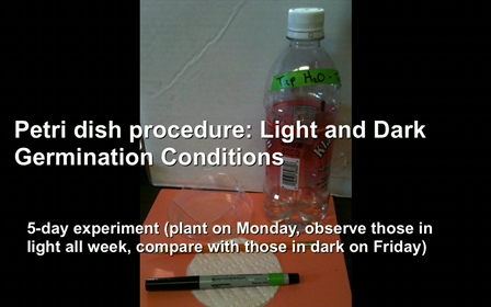 Petri dish procedure_ Light and Dark Germination Conditions