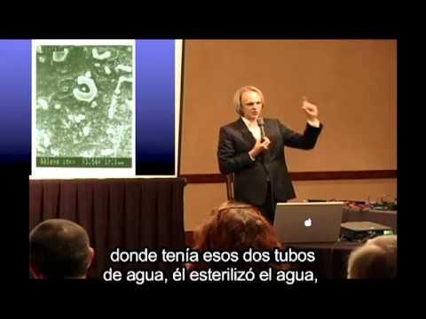 David Wilcock - investigaciones sobre el campo de la fuente subtitulos español