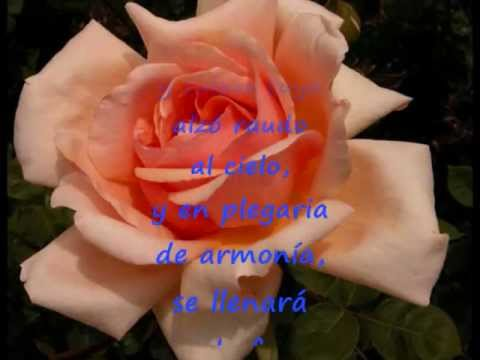 Cristián Mínguez - La Rosa de Piscis