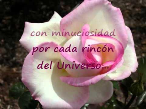 Cristián Mínguez -  La Rosa de Virgo
