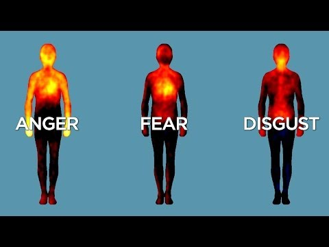 Science Bulletins: Mapping Emotions in the Body