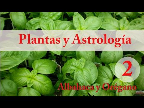 Plantas y Astrología - 2