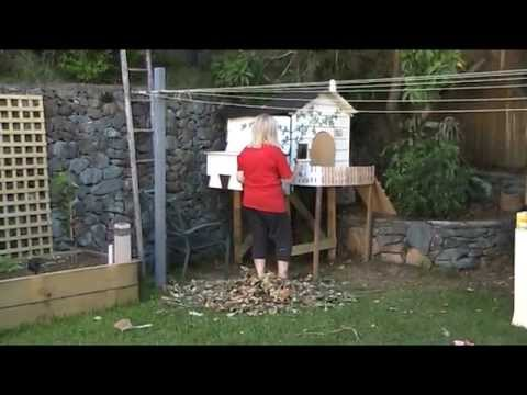 The end of the chicken coup build
