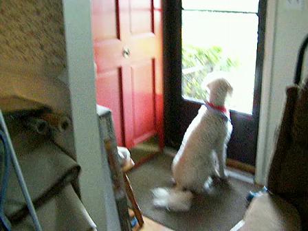 Ruthie 2006 May 25