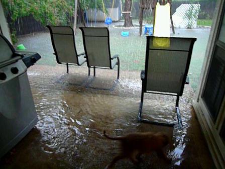 Raining one 9/8/2010