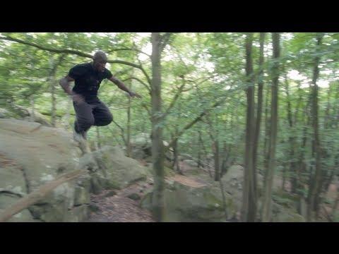 La Voix de la Forêt