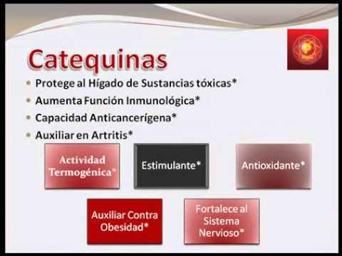 PROTON. RESVERATROL  ( Jugo de la  Longevidad, Salud y  Energia.flv