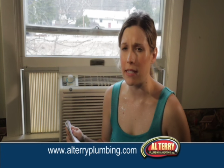 """""""Al Terry Plumbing and Heating"""" Commercial"""