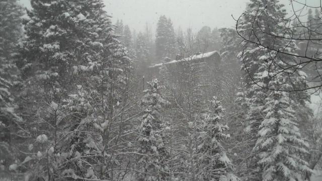 Sundance Snow Scene