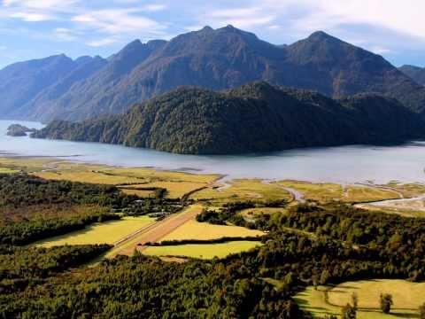 The Next Economy - Nature Connected Economy