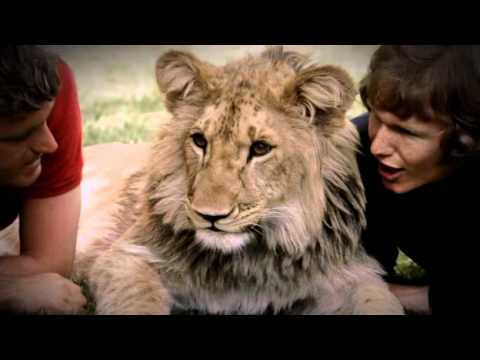 A lion called Christian - The whole Documentary (Full length)