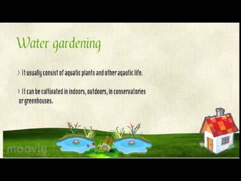 Types and benefits of Gardening