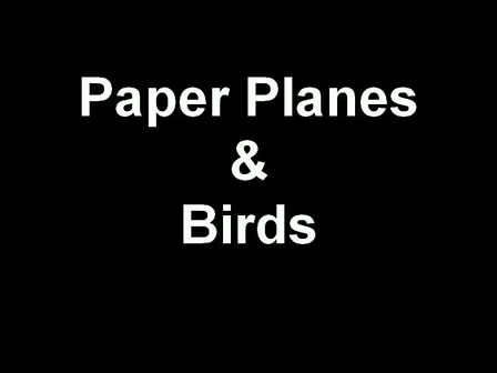 Planes and Birds Project
