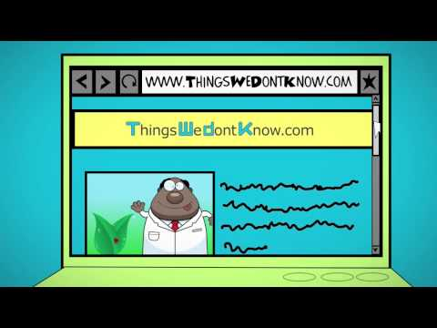 Things We Don't Know - introduction