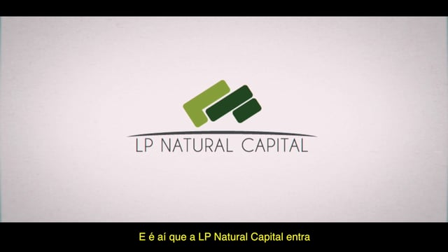 What are LP Natural Capital CIC doing for the rainforest?