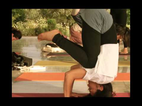 Yoga vini teacher training course