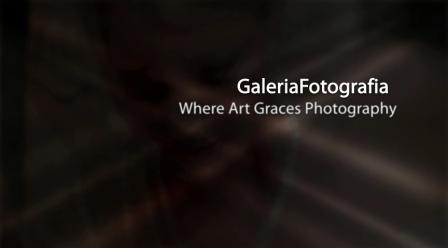 GaleriaFotografia 2010 compilation