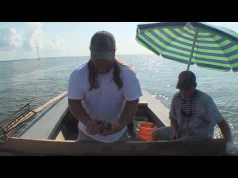 The Oystermen of Apalachicola Bay