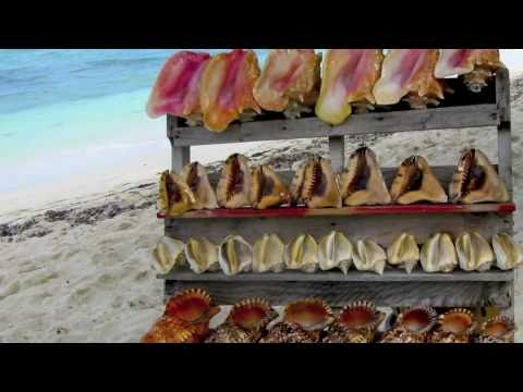 The Conch Shack on Providenciales in the Turks & Caicos