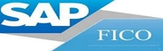 Sap fico training in Noida