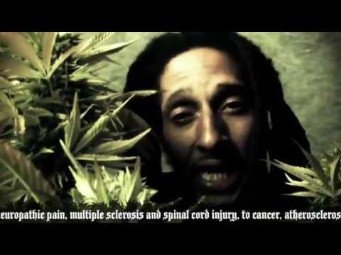Julian Marley-Boom Draw