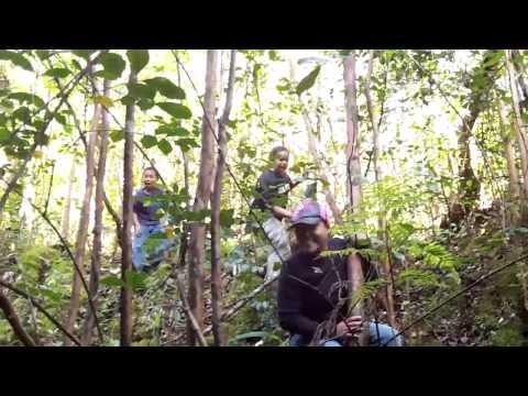 HUNTING HOGS/1 BOAR KOHALA STYLE