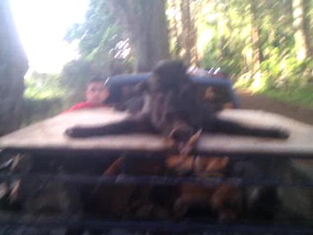 70# BOA 3inch CRANKS BAK @ DA TRUCK SHORT AFTAHNOON RUN 2-16-2013