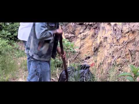 PJ4short- Drive Me Crazy (Official Music Video)