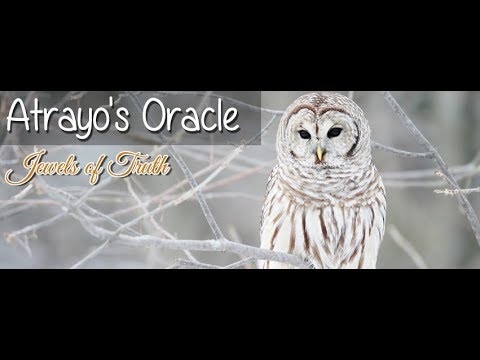 Atrayo's Oracle Vlog as Spiritual Wisdom on Freedom, Dreamers, Worship, Etc...
