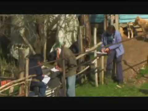 Documental La Otra Orilla - Enlaces Chile