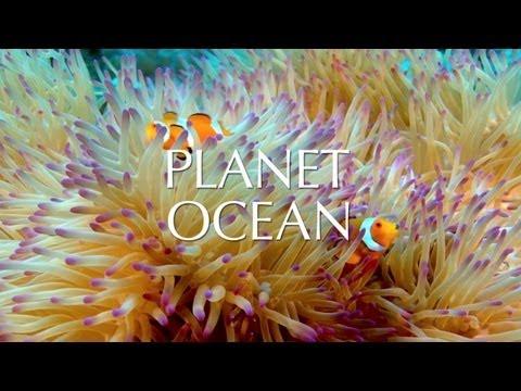 Planet Ocean film - Official Trailer