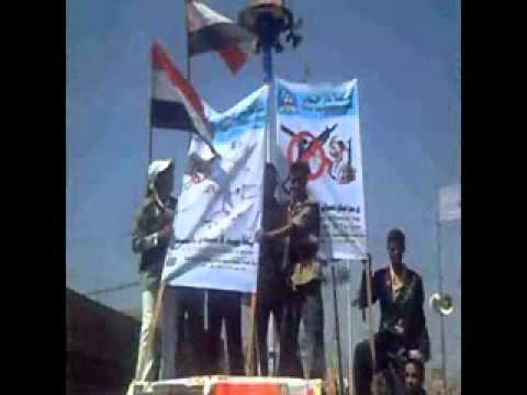 الاسلحة في اليمن وجهود مناهضتها الشيخ المروني