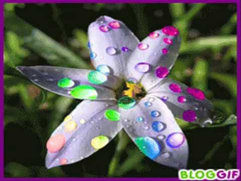 Kellemes szép napot-Virágok keringője